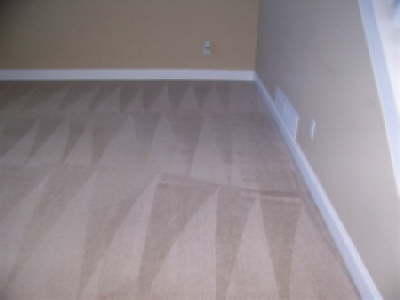 Carpet Cleaning After Shure Clean Carpet Systems